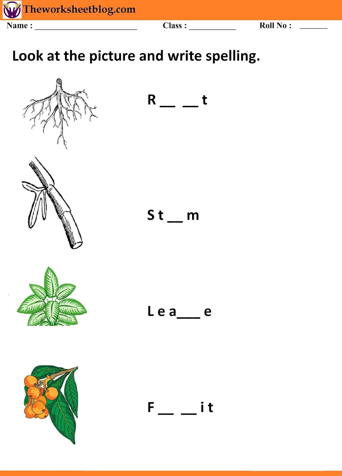 Plants Around Us Worksheets