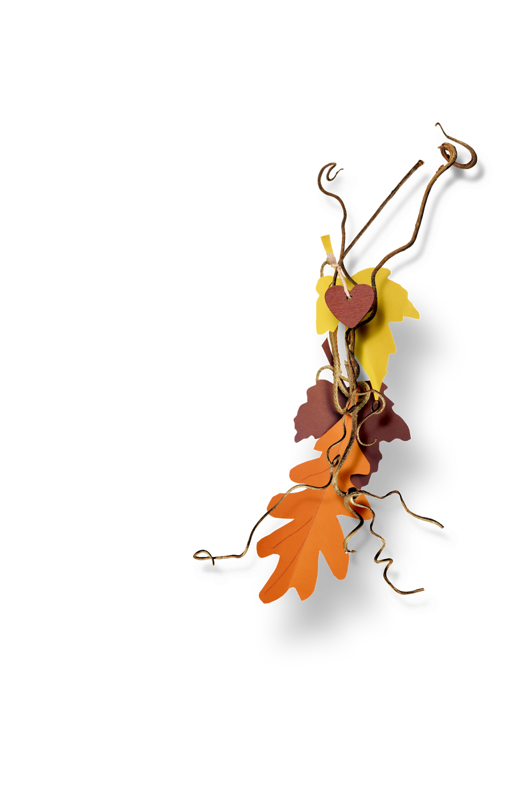 png, otoño, imagen, fondo, transparente, powerpoint, photoshop, photoscape, buho, hojas, arbol, esquinas, plantillas, fondos