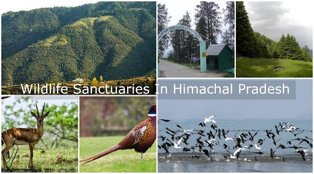 Wildlife Sanctuaries in Himachal Pardesh