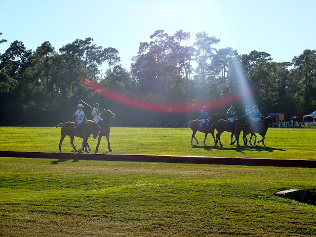 Houston Polo Club, Houston Polo