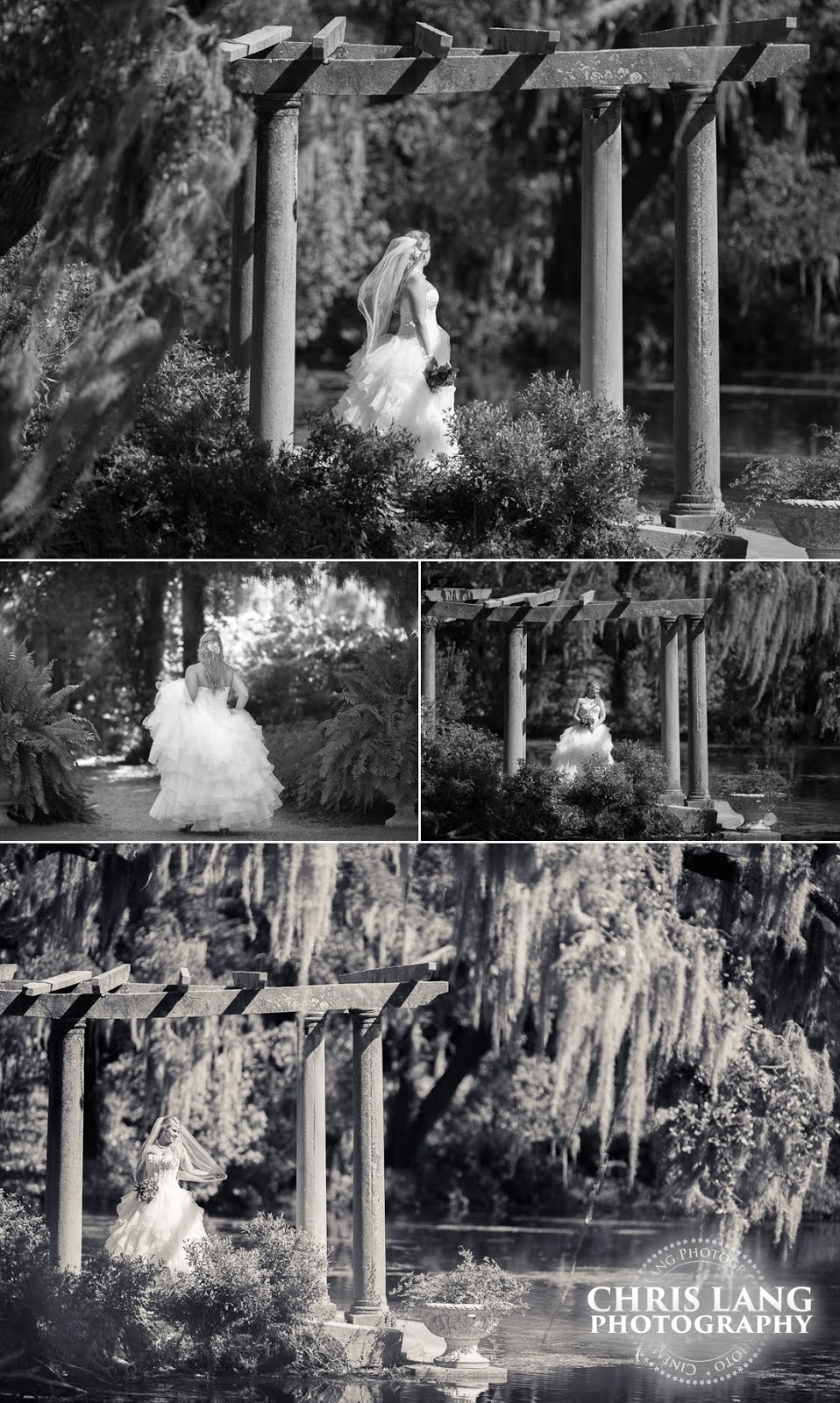Airlie Gardens bridal picture - Black & White Bridal Photography - Bridal Ideas - Wedding dress - Garden Weddings - Outdoor wedding venue - Chris Lang Photography - Wilmington NC Wedding Photographer