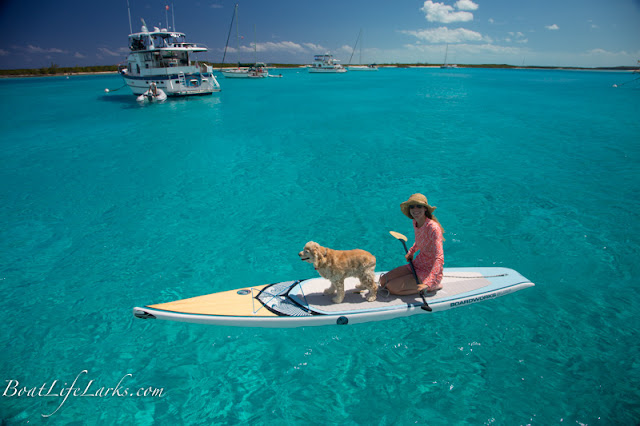 Paddle boarding with our dog in the Bahamas