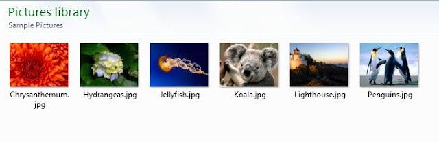 Cara Menampilkan Ekstensi File Pada Windows Explorer (Windows 7)