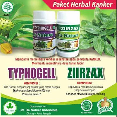 obat kanker servik dengan daun sirsak dan tanaman keladi tikus