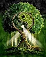 Arbre de vie intérieur comme extérieur, portrait irrésistible pour danser sa vie en mouvement conscient. Danse ton âme!