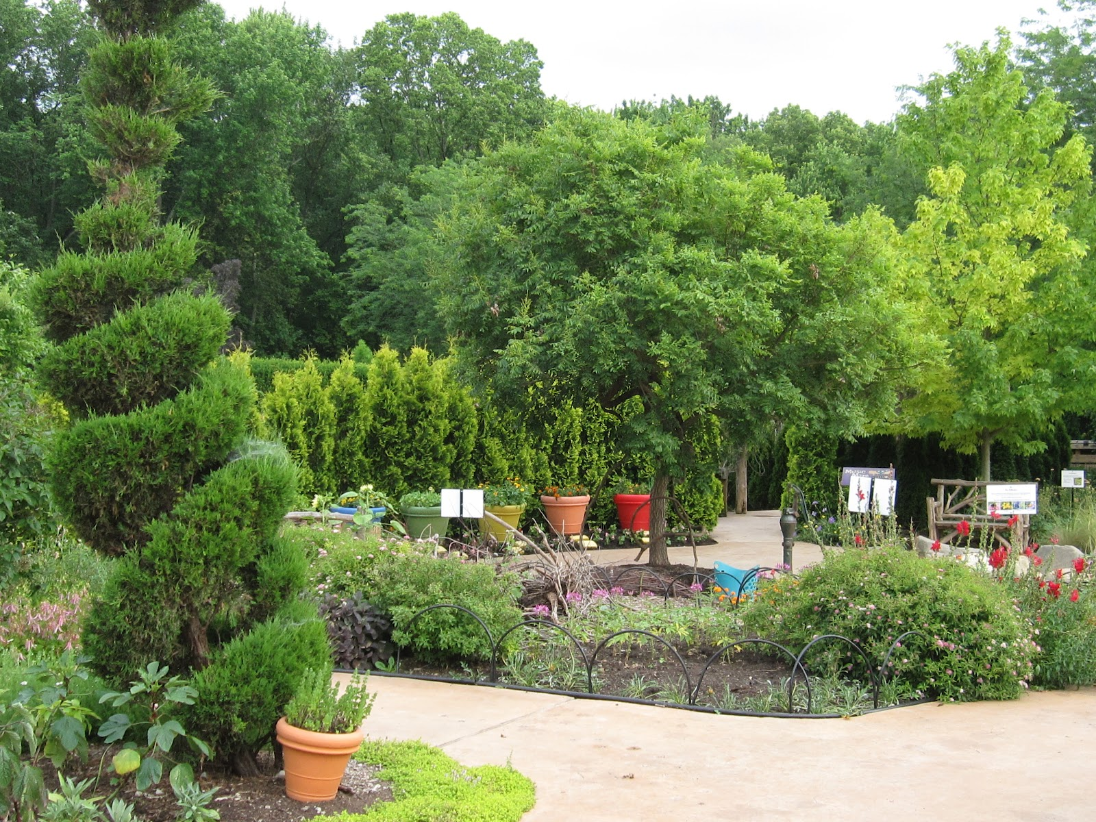 raisons d 39 acheter l 39 arbre topiaire et les plantes fr blog. Black Bedroom Furniture Sets. Home Design Ideas