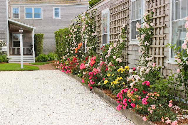 Nantucket| Flower Gardens | Chichi Mary Blog