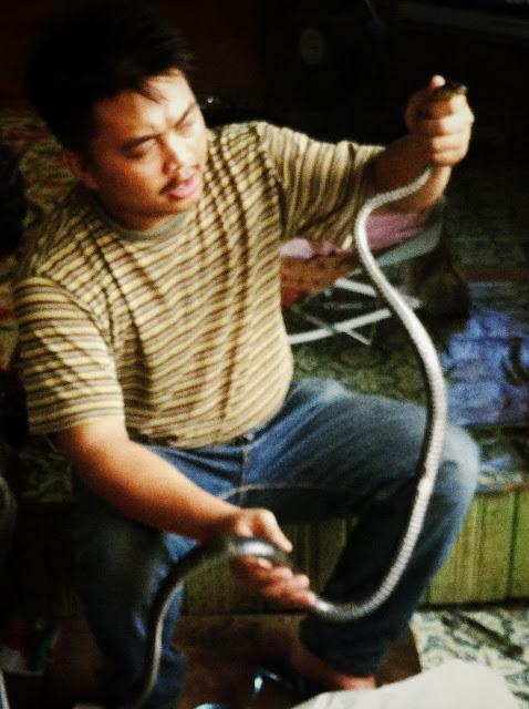 raja ular