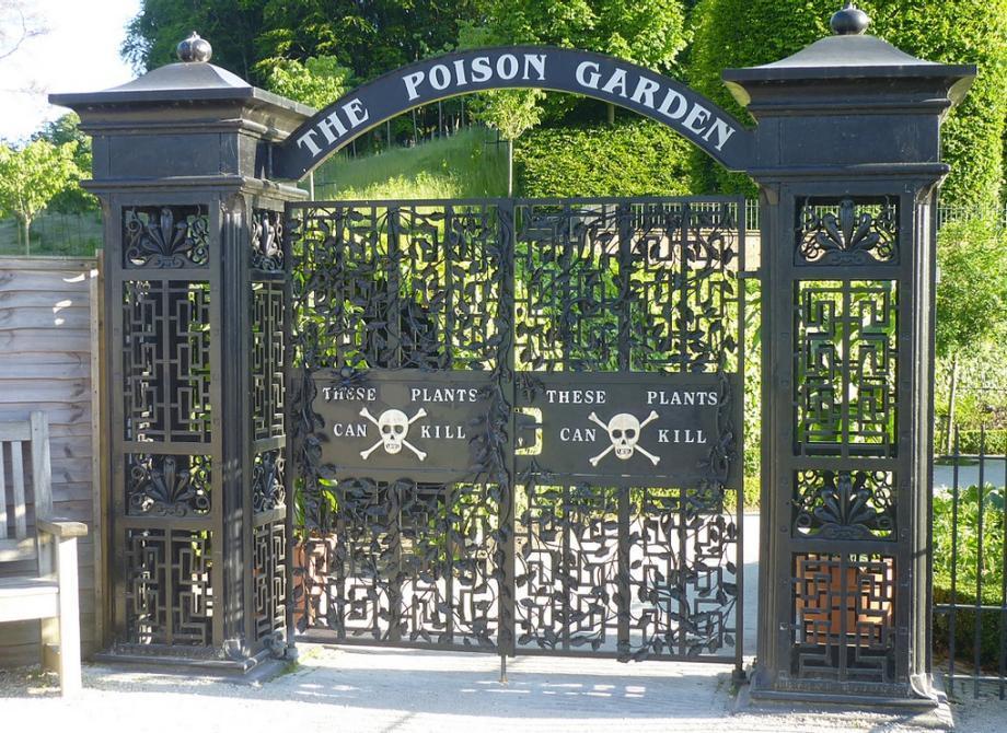 Jardim venenoso