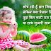 Cute Love Sms for Her in Hindi | Beautiful Love Shayari for Girlfriend