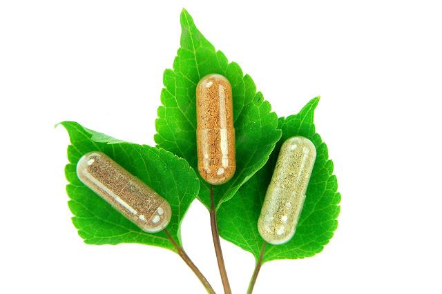 bahan herbal untuk obat dan jamu
