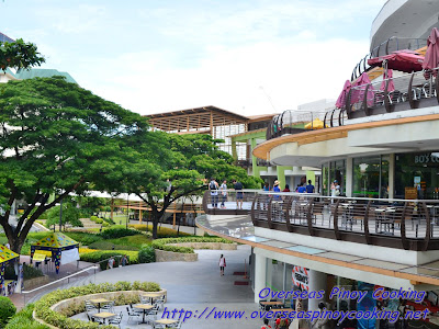 Ayalla Center Cebu, The Terraces