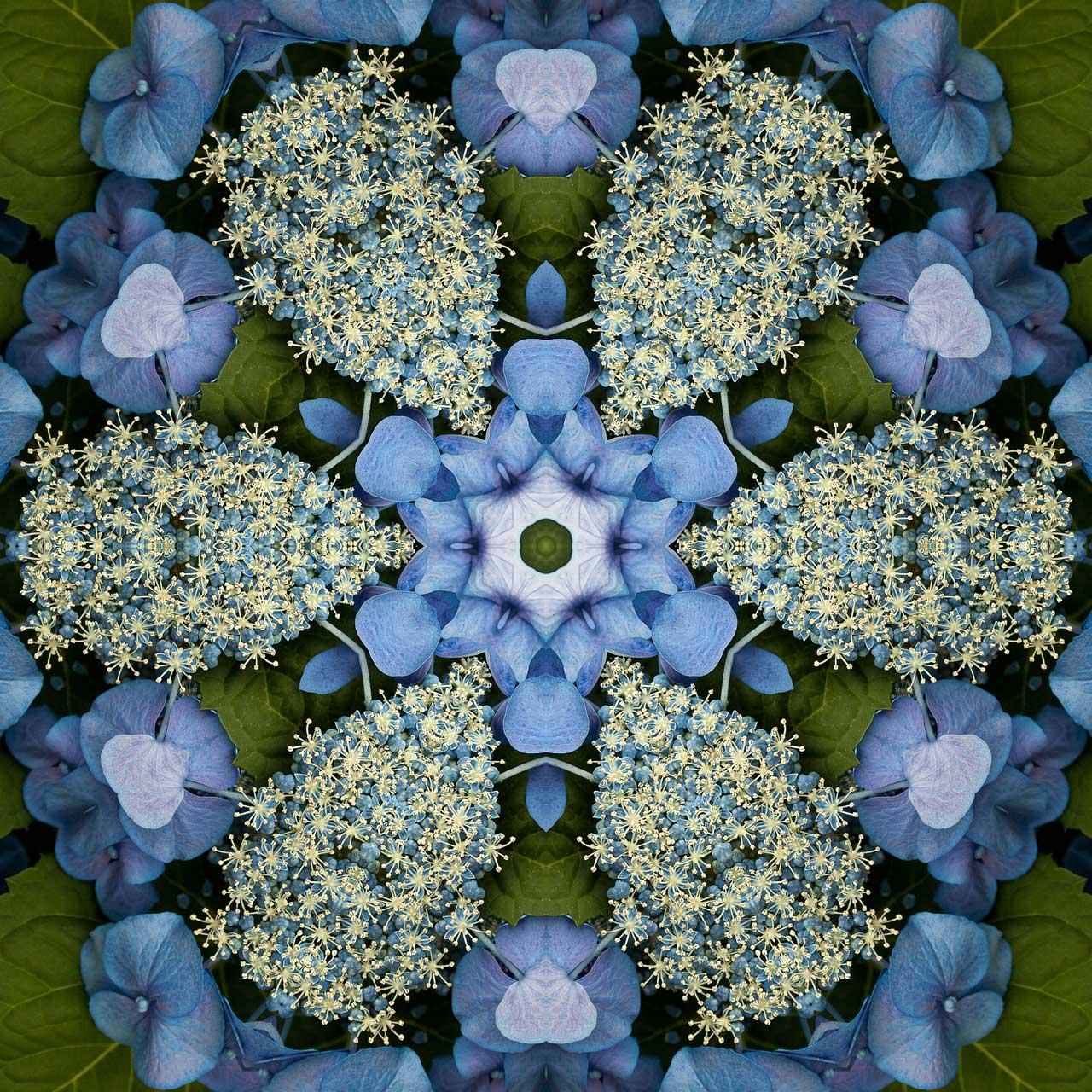 Kaleidoscope H6 by Jeanne Selep