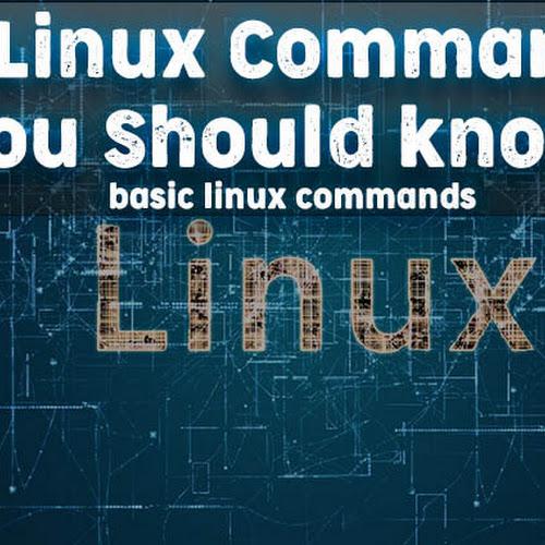 How to fix permissions denied in Kali Linux (Ubuntu,Linux