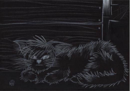 Da sitzt der Hexenkater nun im Dunkeln - Illustration von Mie Dettmann