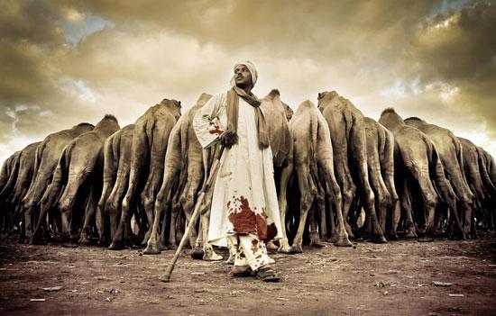 Amazing Photo Camelkeepers