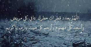 صباح المطر
