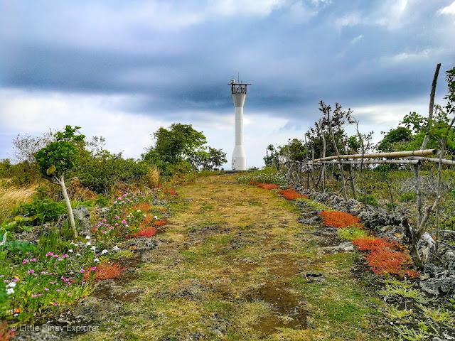 tower, garden