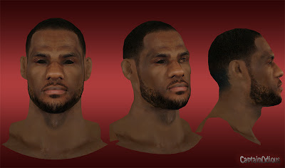 NBA 2K13 LeBron James Default Hair Mod