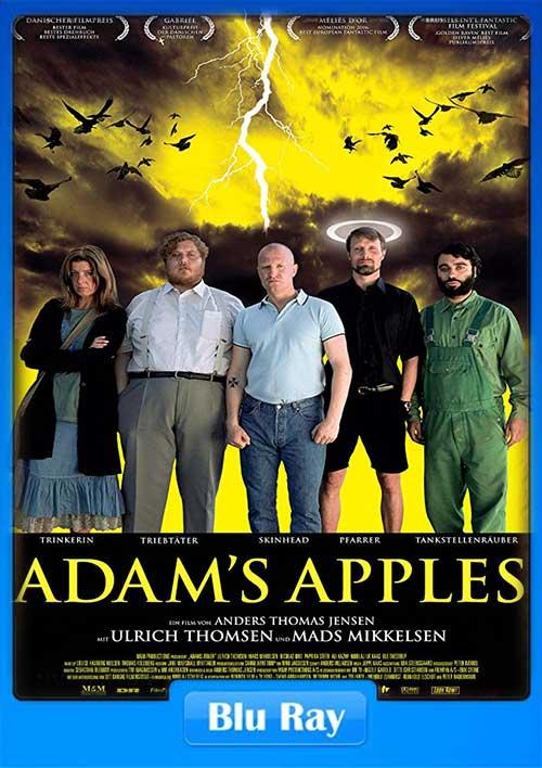 Adams Apples 2005 480p BRRip 300MB x264 Poster
