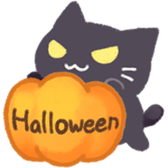 Halloween Cat !