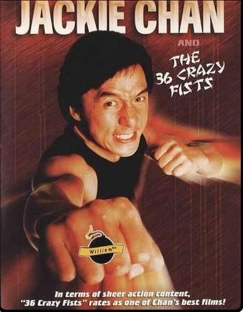 Poster Of The 36 Crazy Fists 1977 Dual Audio 300MB DVDRip 480p Free Download Watch Online Worldfree4u