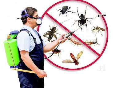 Kiểm soát côn trùng cho Trung tâm thương mại