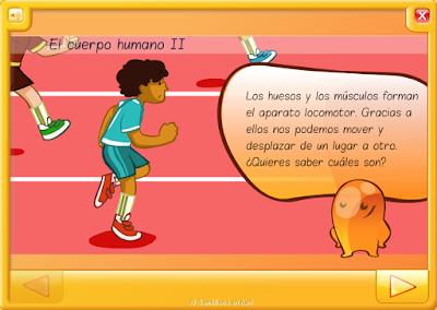 http://www.juntadeandalucia.es/averroes/centros-tic/14001529/helvia/aula/archivos/_6/html/264/conocimiento%20medio%20santillana/contenido/2.biblio_recursos/animaciones/a_elcuerpoII/es_animacion.html