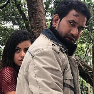 'निरहुआ' की 2018 में रिलीज फिल्मे