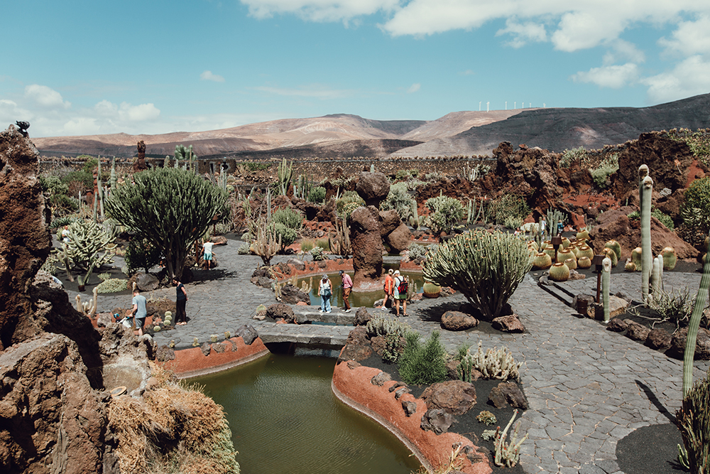 it is built in an old quarry and contains over different species of cacti in so many different shapes colours and sizes