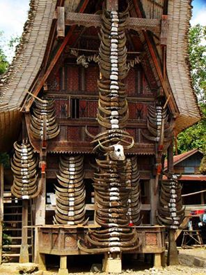 Arsiterian Tk Rumah Adat Toraja Tongkonan