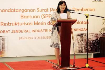 Tahun 2018, Program Peremajaan Mesin dan Peralatan Dinikmati 111 IKM