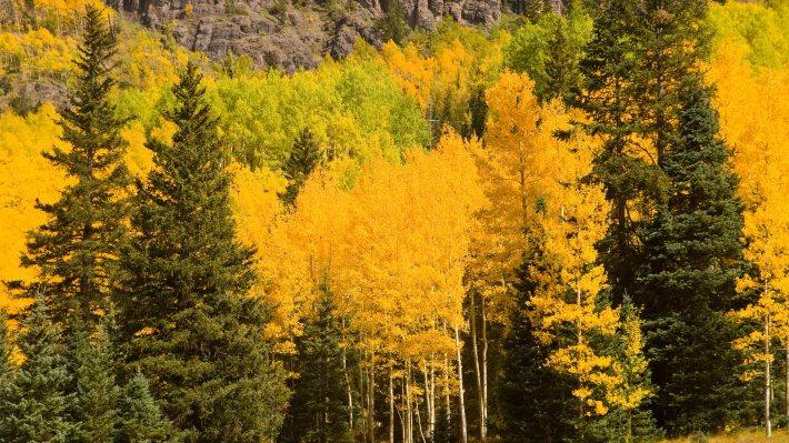 Wallpaper 2: Autumn Landscapes
