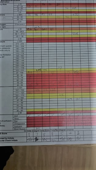Sepsis Chart, lymphoma diagnosis. Velindre Cancer Centre. www.bellybuttonpanda.co.uk