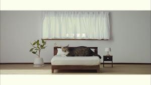 外国人「日本のネコのための家具がカワイイ」(海外の反応)