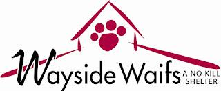 www.waysidewaifs.org