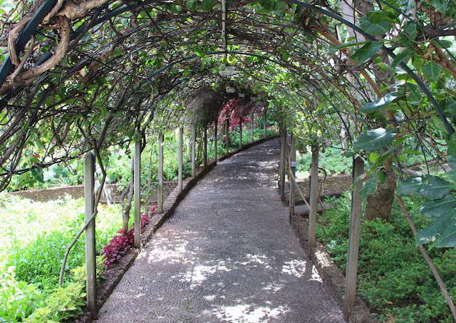 a tunnel in the garden of the Quinta Vigia