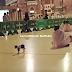 Subhanallah.....Masuk waktu solat, kucing jalanan kejutkan jemaah di Masjidil Haram