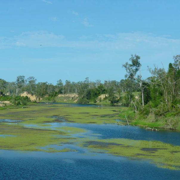 Wasser Landschaft Ostküste Australien
