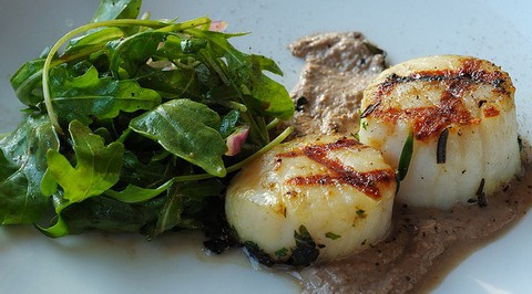 Grilled Scallops with Walnut and Fennel Sauce
