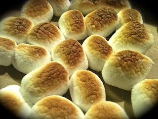 Toasted Marshmallows.  Whoever came up with the idea of toasting these puppies deserves a holiday named after them!