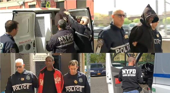 Pandilleros dominicanos arrestados en El Bronx y Manhattan por narcotráfico y armas ilegales