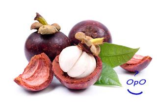 Opo - Manfaat buah manggis untuk kesehatan