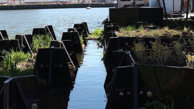 Rotterdam-jardín-flotante-creado-con-plástico-reciclado-de-ríos