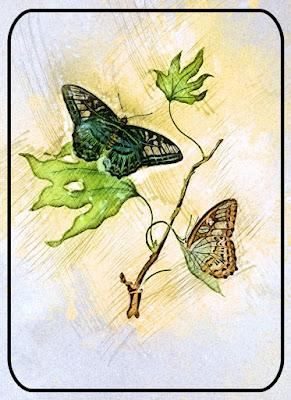 https://4.bp.blogspot.com/-s8D9DZcvgTI/XFme6vJjHII/AAAAAAABNek/qW-oAlnKeNAL03Fa-_0UnNjPmD46pbjrgCLcBGAs/s400/ButterflyKisses_TlcCreations.jpg