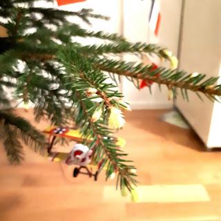Kuusenkärkkä joulukuusessa