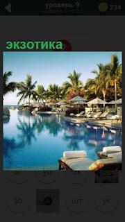 экзотика в тропиках с бассейном и шезлонгами