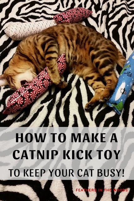 bengal cat with homemade kick toy