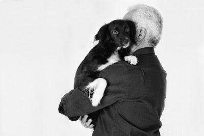 Los perros detectan si estás triste o feliz