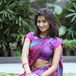 Hot South Indian Woman in Saree 16 Photos